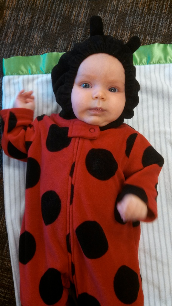 I quickly got over my hangups when I saw how insanely cute she was as a ladybug.