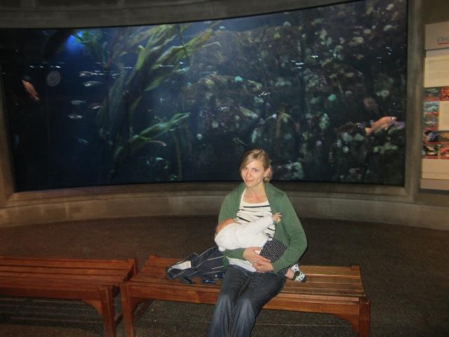 Baby's gotta eat, even at the aquarium.