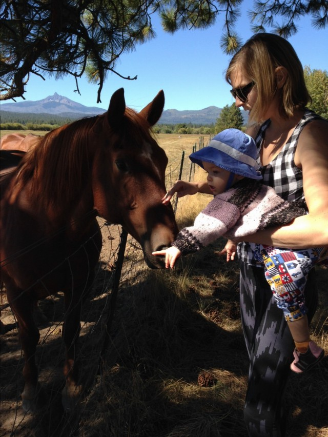 Ten Thousand Hour Mama - Horse at Black Butte Ranch