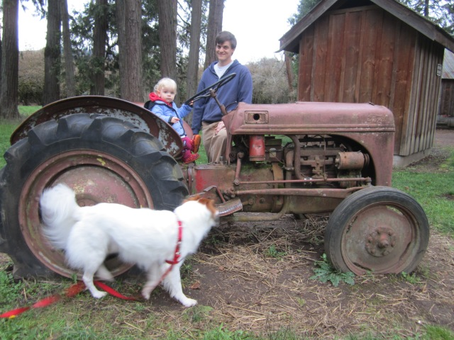 Peeper loved the tractor!