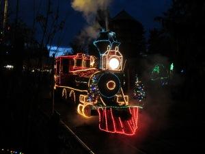 Zoo Lights Train - Ten Thousand Hour Mama