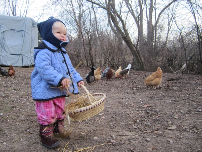 Chicken whisperer - Ten Thousand Hour Mama