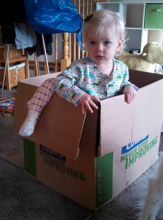 Moving with a toddler - Ten Thousand Hour Mama