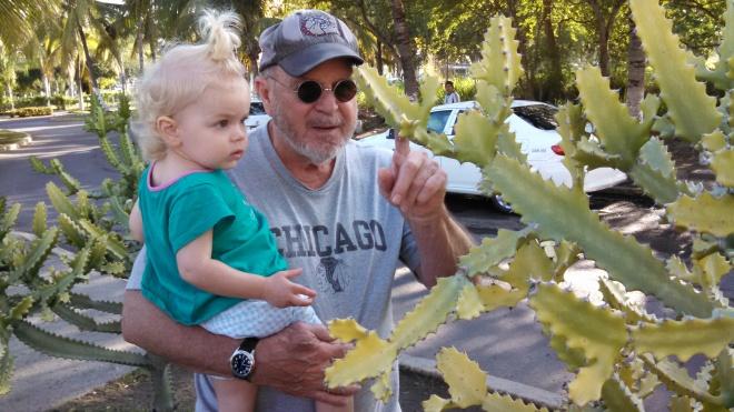 cactus grandpa - Ten Thousand Hour Mama