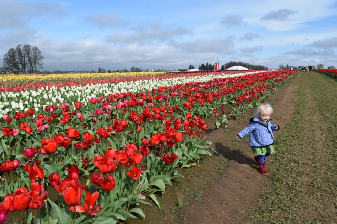 Woodburn Tulip Festival - Ten Thousand Hour Mama