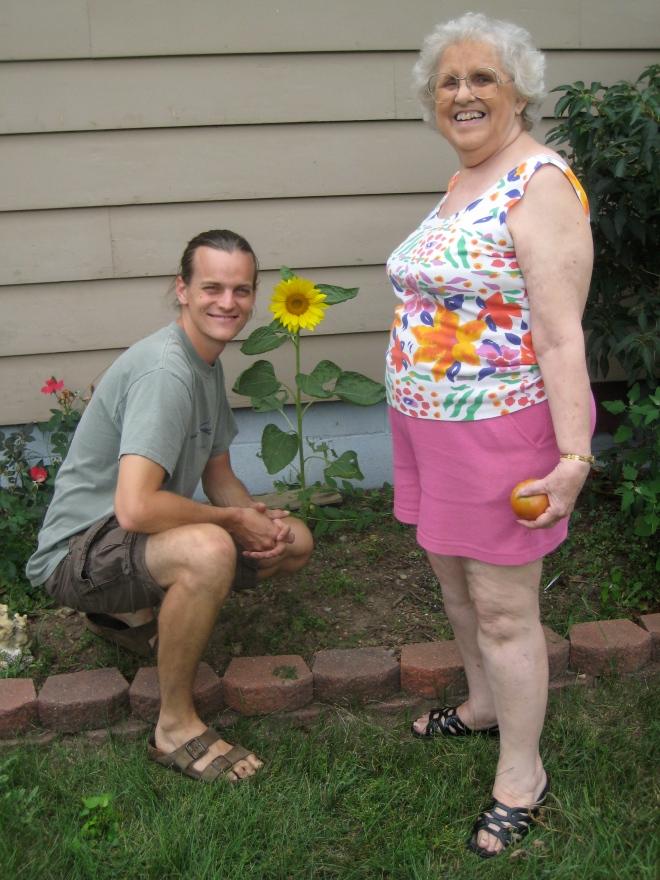 grandma Bessie sunflower
