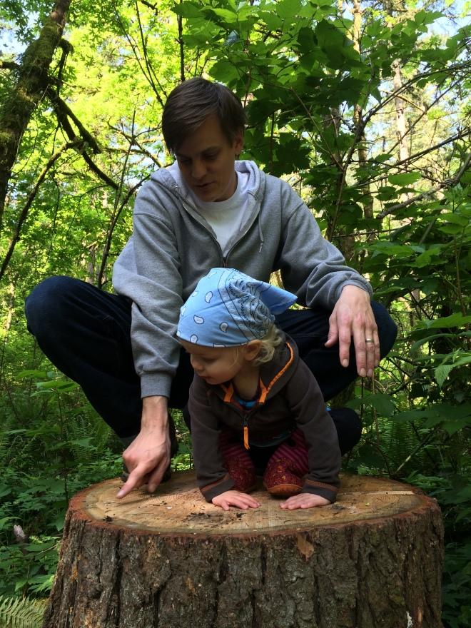 Toddler hike tree stump Oregon